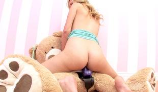Brett Rossi Bonks A Teddy Bear